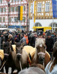 Pferdemarkt Leonberg